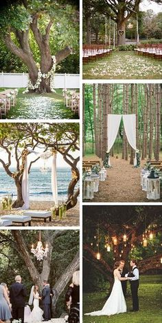 Using a tree as a background = genius!!   outdoor wedding ceremony ideas