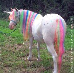 rainbow unicorn :~) - I want one to ride at my party - wouldn't that be super awesome