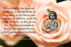 Bhagavad Gita Chapter 7, Verse 9. Hindu Quotes, Gita Quotes, Krishna Quotes, Religious Quotes, Wisdom Quotes, Krishna Leela, Shree Krishna, Lord Krishna, Baby Krishna