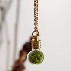 Globe Necklace Gold Plated - living terrarium necklace: reindeer moss, soil, charcoal