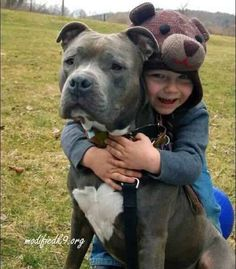 Best friends #pitbull
