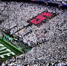 Penn State Homecoming 2012. Pink and Black S-Zone!