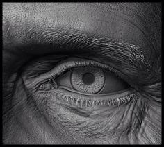 eye close up,sculpt