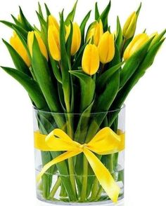 "If you search for ""large flower arrangements"" with Yahoo! Search [image], you will surely find the answer you want. Yellow Tulips, Tulips Flowers, Pretty Flowers, Fresh Flowers, Spring Flowers, Planting Flowers, Bouquet Flowers, Glass Flowers, Art Flowers"