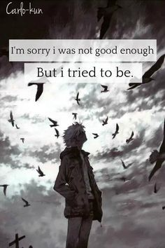 I'm sorry i was not good enough But i tried to be.