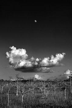 Clyde Butcher, History, 1942-Present, Landscapes, Title: Moonrise by Clyde Butcher