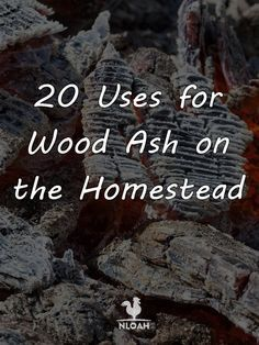20 Uses for Wood Ash on the Homestead