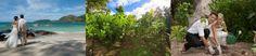 "Raffles Praslin Seychelles newlyweds ""tree of love"" program celebrates one year"