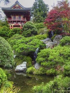 Japanese Garden, Golden Gate Park, San Francisco, USA