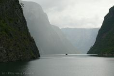 P1230007 (c)800 fjord