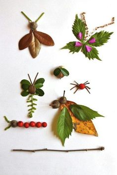 bugs made from leaves, twigs and berrys