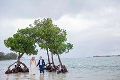 #destinationwedding #mauritiuswedding #mauritius #destinationwedding #stuartdodsphotography Mauritius Wedding, Destination Wedding, Street View, Wedding Photography, Destination Weddings, Wedding Photos, Wedding Pictures