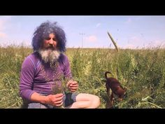 Grapefruit Diät - Robert Franz - YouTube