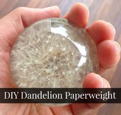 How To Make A Dandelion Paperweight - DIY Gift World