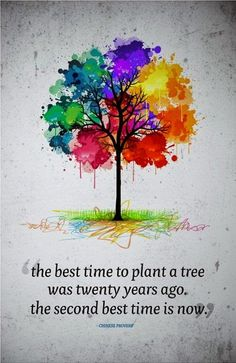 Harris Sisters GirlTalk: The Best Time to Plant a Tree Was Twenty Years Ago. The Second Best Time Is Now.