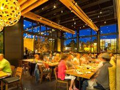 Izakaya Den on Pearl in Denver---Denver's Ten Best Rooftop Patios and Bars