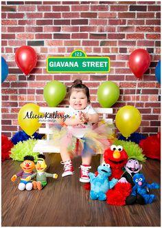 Alicia Kathryn Photo-Design: NH Newborn Photographer -- Sesame Street theme cake smash, One year photo shoot, Sesame Stret one year photo shoot