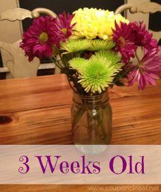 5 Ways to Help your Fresh Cut Flowers Last Longer