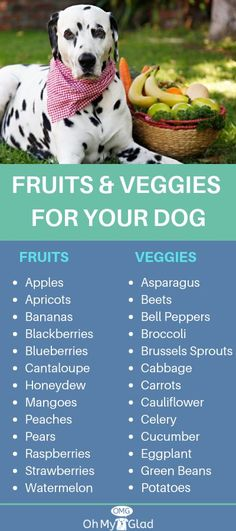 It is true that the most common reason for allergies is the food that your pet intake. And, to curb that, all you need is a dog food allergy diet. Homemade Dog Treats, Healthy Dog Treats, Dog Treat Recipes, Dog Food Recipes, Vegetarian Dog Food Recipe, Food Tips, Food Food, Foods Dogs Can Eat, Make Dog Food