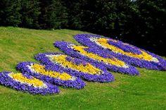 Peyzaj - Kavşak ve Refüjler  #istanbul #ibbPR #ibb #park #garden #flowers #nature #season