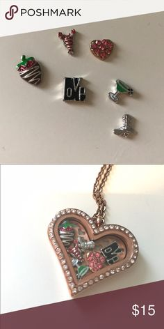 Charms for living locket necklace Charms for living locket necklace (necklace is not included). These charms will fit origami owl living locket necklace. Selling as bundled of 6 for $15. It's $5 if buy separately. No Trade please. And Thank you for liking and sharing my listing 😍. I appreciate it 👍. Jewelry