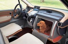 The Honda W.O.W makes a special place for man's best friend :)