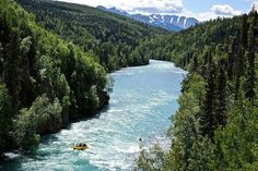 Kenai, Alaska. Never been but my husband grew up here and we want to go soon!