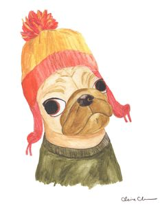 Pug in Jayne's Hat - by Claire Chambers - Chickenpants Studio