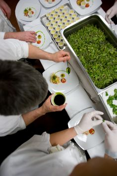 D'Amico Catering :: Chefs Preparing Food    photo by Noah Wolf Photography