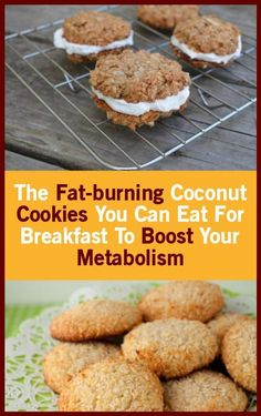 You can eat fat-burning coconut cookies to boost your metabolism your food Recipes With Whipping Cream, Cream Recipes, Unflavored Protein Powder, Coconut Protein, Cocoa Cookies, Protein Cookies, Eat Fat, Holistic Nutrition, Boost Your Metabolism