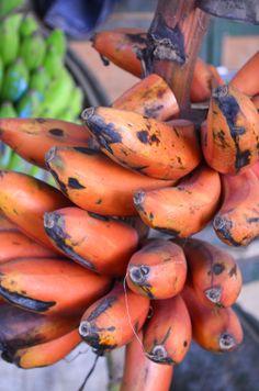 RED bananas at the Mombasa Spice Market!Photography bymollyinkenya