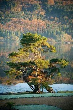 Tree house, Loch Foil, Scotland! #homeimprovementScotland,