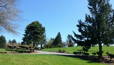 A day at the park in Beaverton, OR