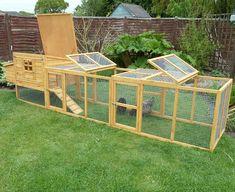 Dorset Coop & Double Run Moveable Chicken Coop, Chicken Coop Pallets, Chicken Coop Plans, Quail Coop, Raising Quail, Bunny Cages, Chicken Cages, Chicken Coop Designs, Chicken Runs