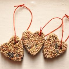 Even birds like gifts.  Make your own birdseed ornaments to feed your feathery friends.