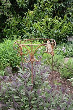 Support pour plantes et arbustes, tuteur, rond, en métal,... https://www.amazon.fr/dp/B01DWQSHX0/ref=cm_sw_r_pi_dp_x_Wh5AzbSF85F1Q