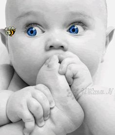 Following the bee with his eyes  :)