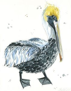 The Shy Pelican by The Art of Michelle, original illustration on paper, 11x14""