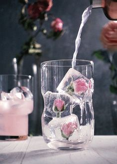 #rose#ice#drink#cocktail#flowers#spring#gif#cinemagraph#kitchen ghosts#grapefruit#pink#aesthetic#floral shared by Alice