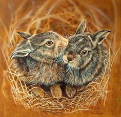 Leverets (Baby Hares) by Sue Warner