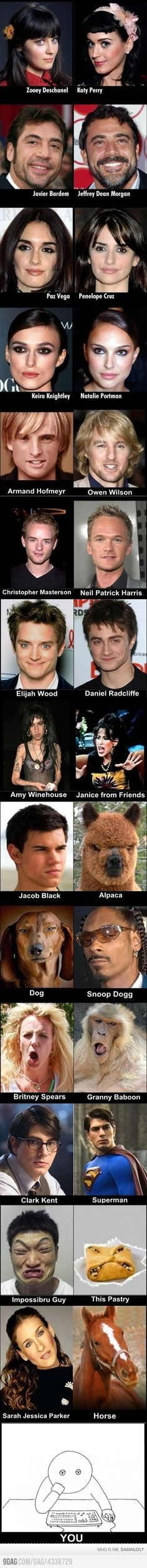Celebrity Lookalikes