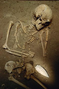 Skeleton, 2,000 years old, with large ceremonial flint knife, at the Remedello Sotto cemetery just south of the Italian Alps, where 124 tombs were excavated in the 19th-century