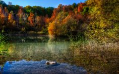 On Little Pond by Brian Behling