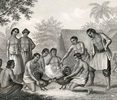 1860 Vintage Print of Cockfighting in the Philippines, Aborigines of New Zealand, etc. - Antique Steel Engraving Plate 40
