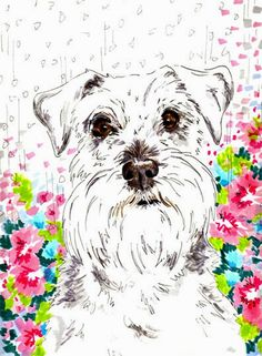 All About Cute Miniature Schnauzer Puppies Personality