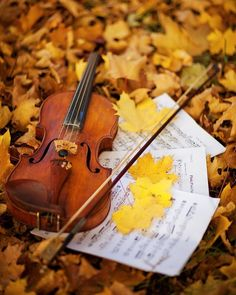 Autumn discovered by 𝓈𝒶𝓂𝒶𝓃𝓉𝒽𝒶 𝓈𝑒𝓇𝑒𝓃𝒶 ✰ on We Heart It Music Images, Music Pictures, Fall Pictures, Fall Photos, Violin Photography, Nature Photography, Sound Of Music, Music Love, Violin Tumblr