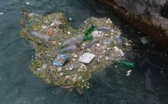 Tutkijaryhmä on löytänyt Tyynestämerestä jo toisen valtavan jätelautan. Globe, Convenience Store, Convinience Store, Speech Balloon