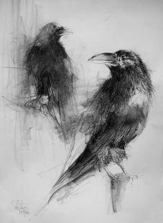 Crow Art, Raven Art, Bird Art, Charcoal Art, Charcoal Drawing, Bird Drawings, Animal Drawings, Arte Grunge, Silverpoint