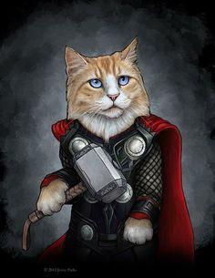 thor-cat
