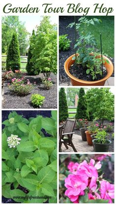 Gardening Tips – How To Garden and Landscape Diy Craft Projects, Garden Projects, Project Ideas, Summer Garden, Home And Garden, Do It Yourself Decoration, White Cottage, Do It Yourself Home, Cottage Homes